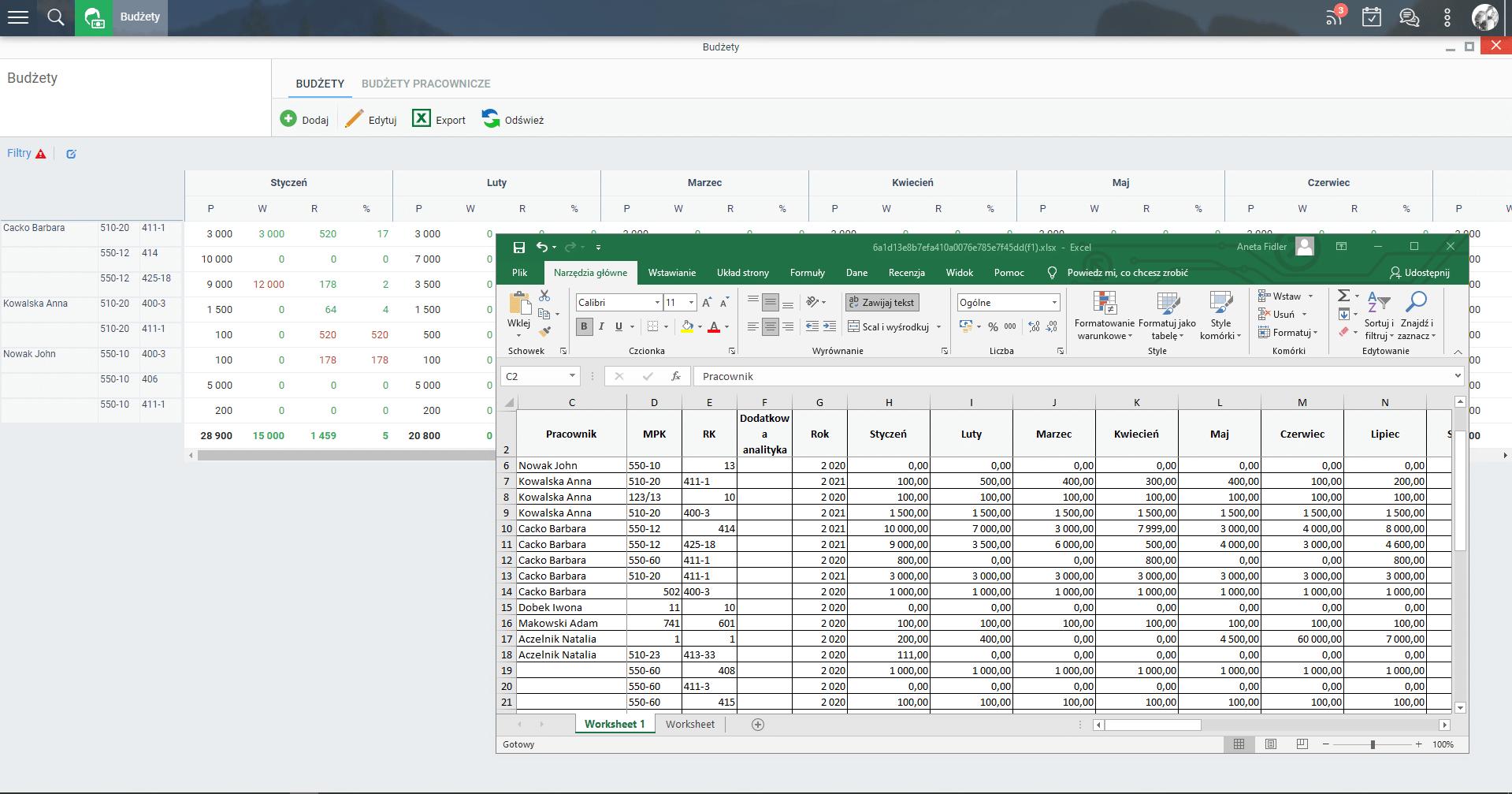Edycja budżetu przez Excel